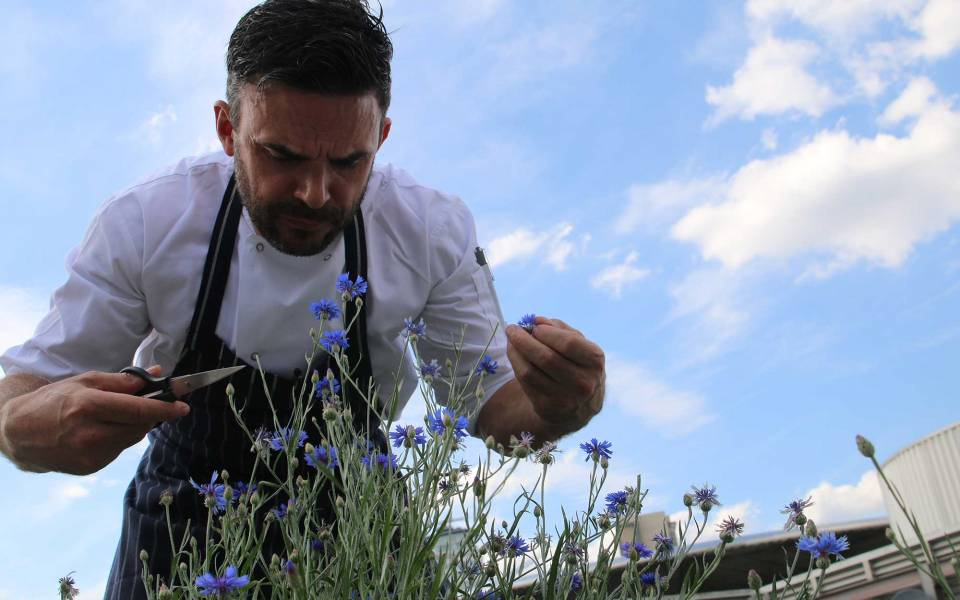 Oliver Thomas Head Chef at The Lowry tending to the roof garden