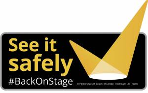 Picture of See it Safely Logo